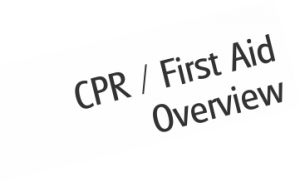 Lifeguarding CPR / First Aid
