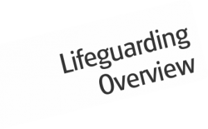 lifegaurd course overview
